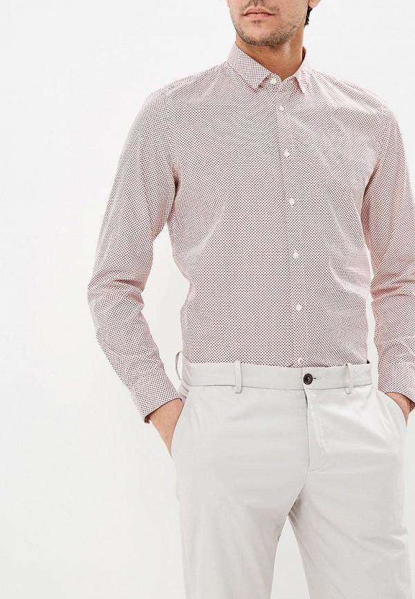 мужская рубашка с длинным рукавом sisley, розовая
