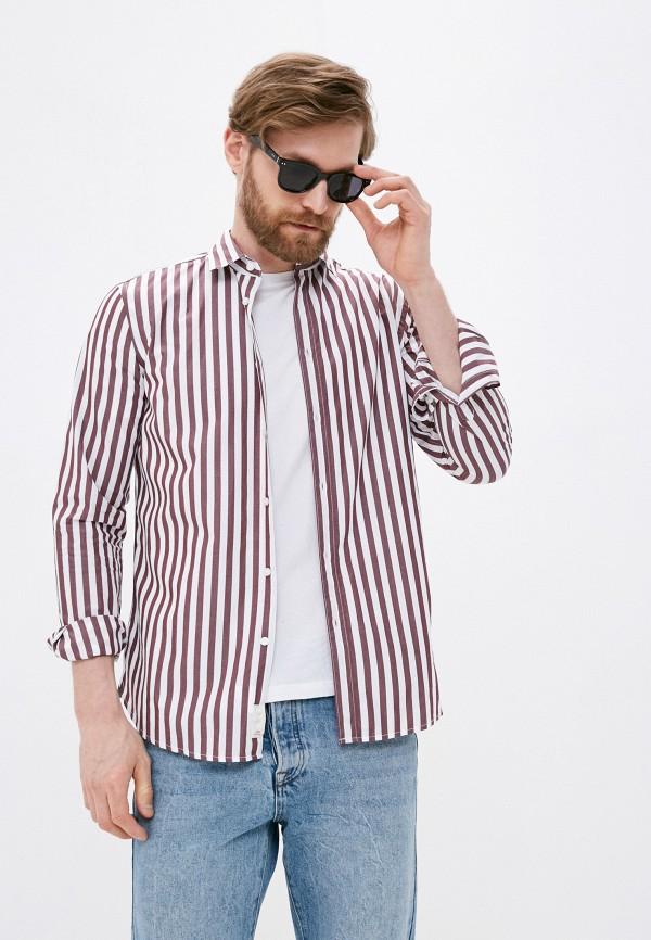 мужская рубашка с длинным рукавом sisley, коричневая