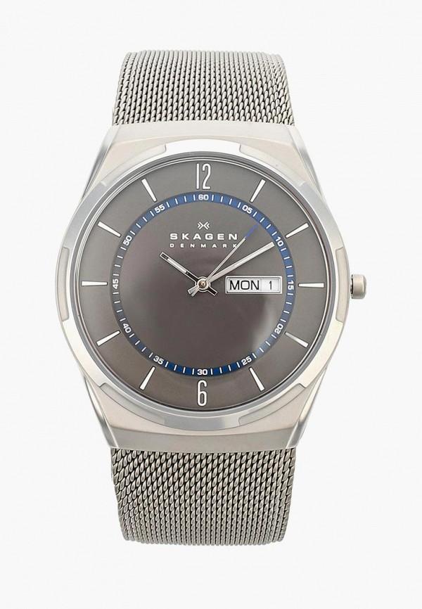 Часы Skagen Skagen SK006DMWCO43 skagen ремни и браслеты для часов skagen skskw2267