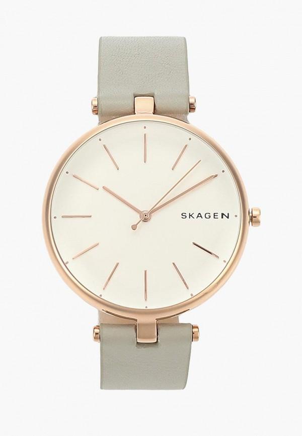 Часы Skagen Skagen SK006DWCNSC2 цены онлайн