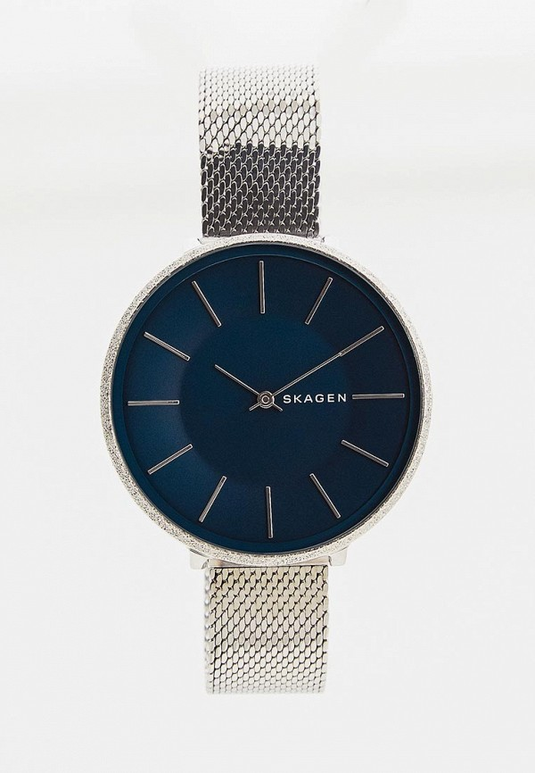 Часы Skagen Skagen SK006DWDSBS1