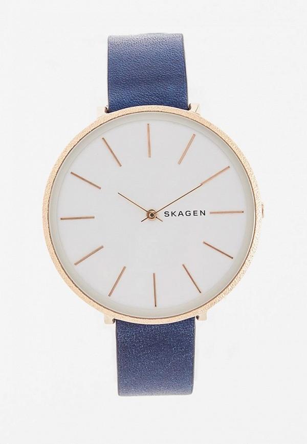 Часы Skagen Skagen SK006DWDSBS3 часы skagen skagen sk006dwbfyo0
