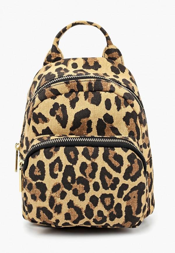Купить Рюкзак Skinnydip, Leopard Zadie, sk010bwdrbo7, коричневый, Осень-зима 2018/2019