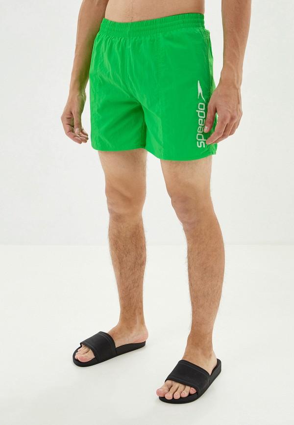 мужские спортивные спортивные шорты speedo, зеленые