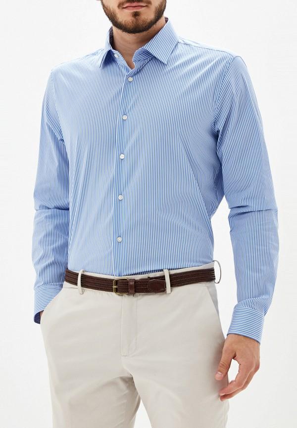 мужская рубашка strellson, голубая
