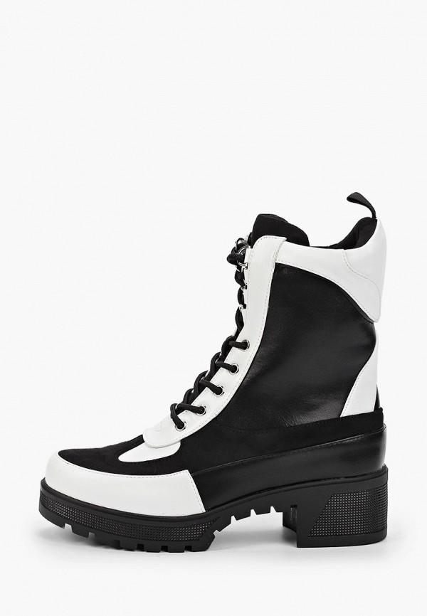 цена Ботинки Stephan Stephan ST031AWHGOU1 онлайн в 2017 году