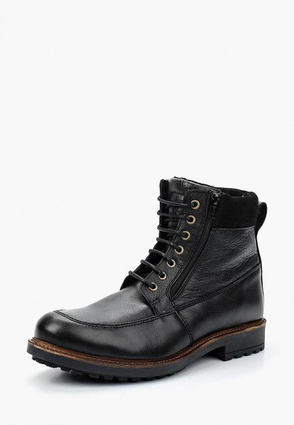 все цены на Ботинки Storm Storm ST891AMBHK55 онлайн