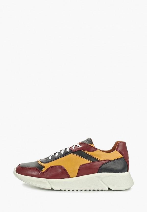 мужские кроссовки storm, разноцветные