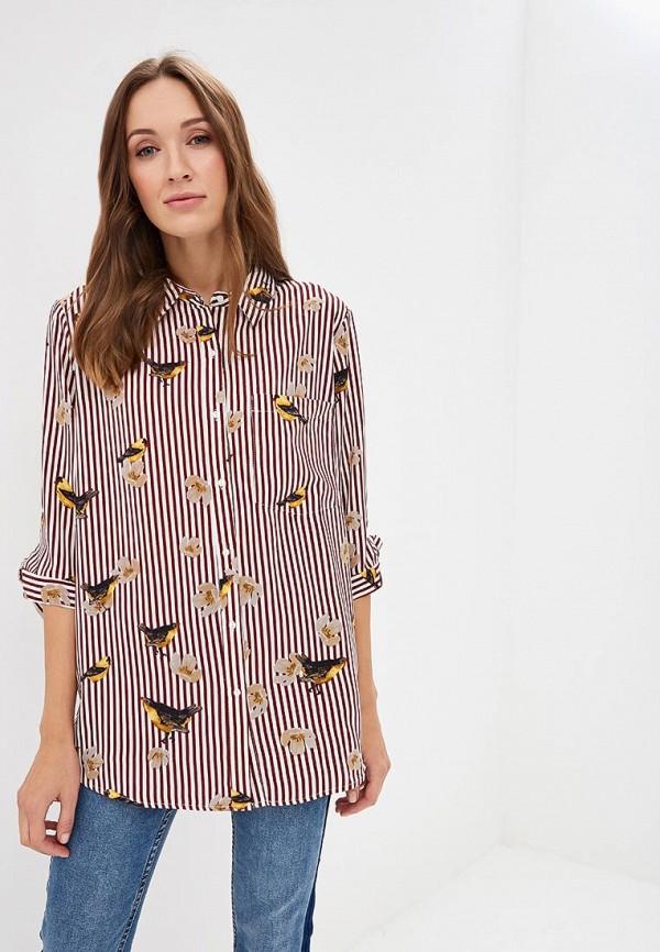 Блуза Sweewe Sweewe SW007EWCWRY2 цена