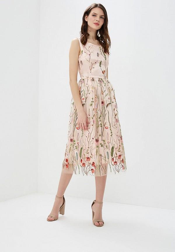 Платье Sweet Miss Sweet Miss SW014EWBFOM9