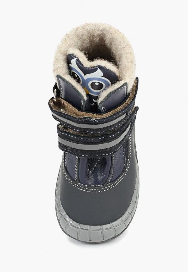 Ботинки для мальчика Tapiboo FT-23011.18-OL08O.01 Фото 4