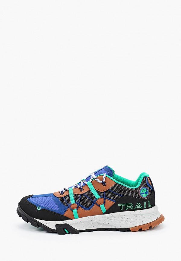 мужские низкие кроссовки timberland, разноцветные