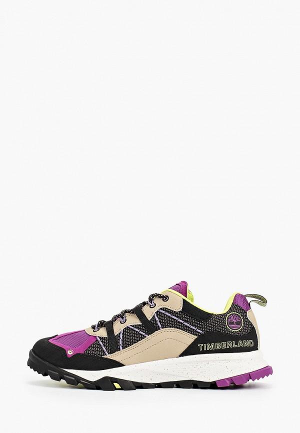 женские низкие кроссовки timberland, разноцветные