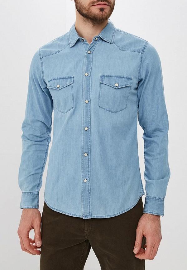 Купить Рубашка джинсовая Tiffosi, ti018emdesf3, голубой, Осень-зима 2018/2019