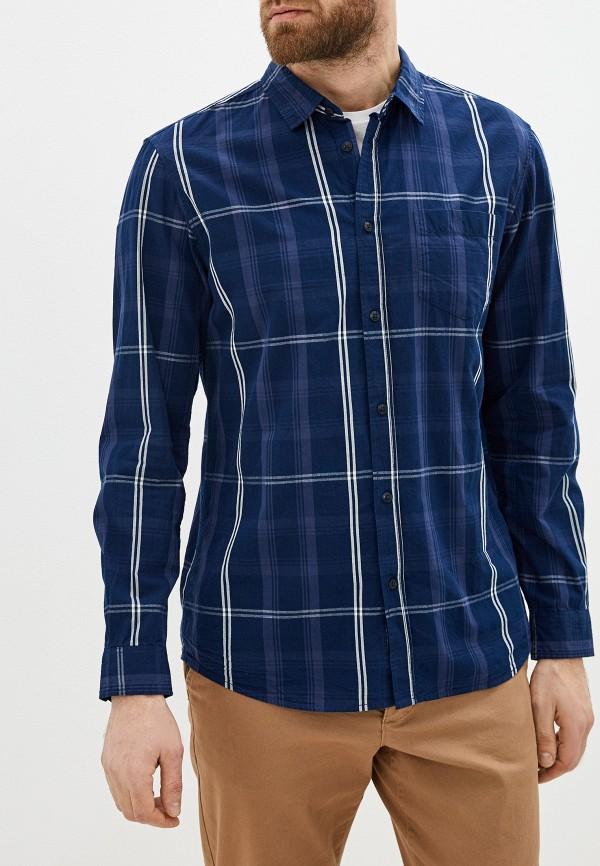 мужская рубашка с длинным рукавом tiffosi, синяя