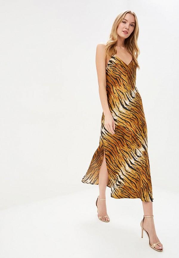 Платье Topshop Topshop TO029EWEFRJ3 цена в Москве и Питере