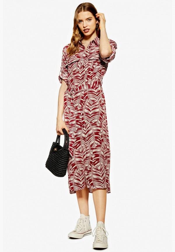 Платье Topshop Topshop TO029EWFBEC2 платье topshop topshop to029ewaddr4