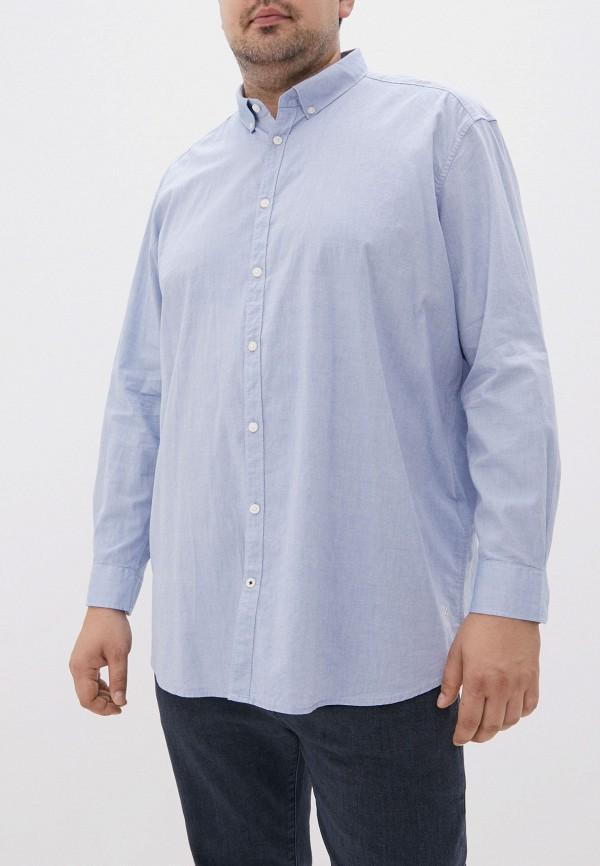 мужская рубашка tom tailor, голубая