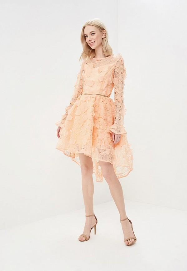 Платье True Decadence True Decadence TR033EWASZW7 cnd цвет decadence