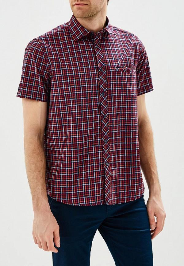 Купить Рубашка Trespass, BAFFIN, TR795EMBGDG9, бордовый, Весна-лето 2018
