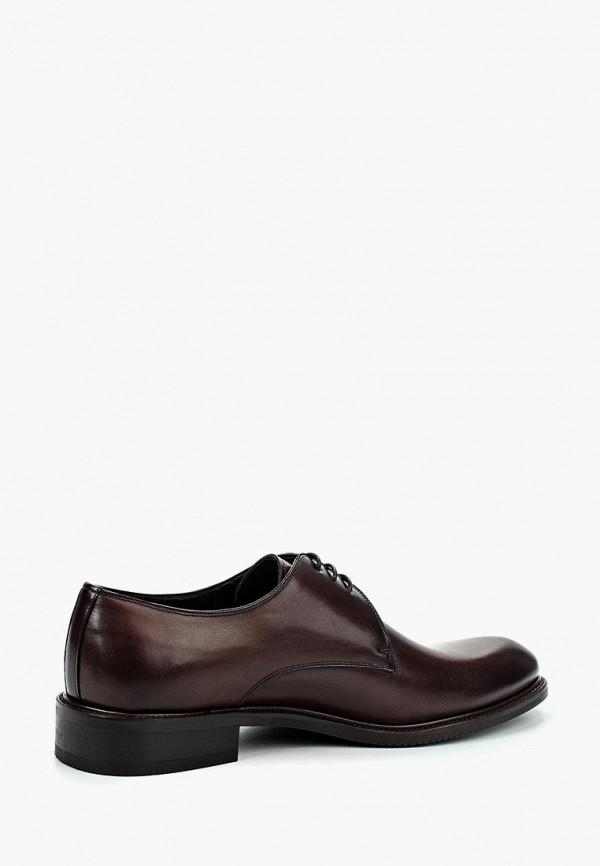 Фото 10 - мужские туфли Umber коричневого цвета