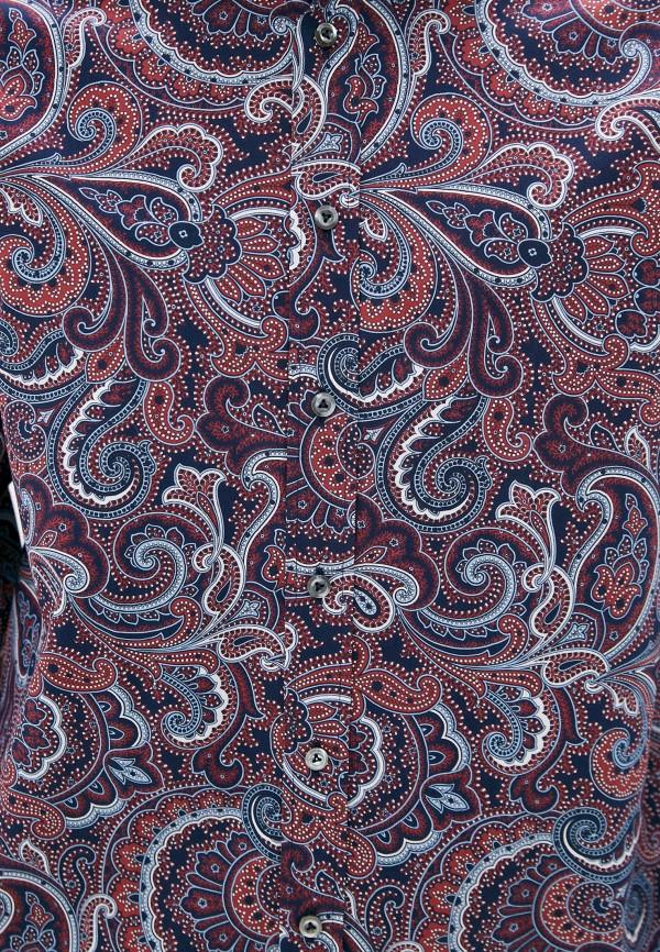 Рубашка Van Laack Van Laack RETON-TF_171343_ST фото 5