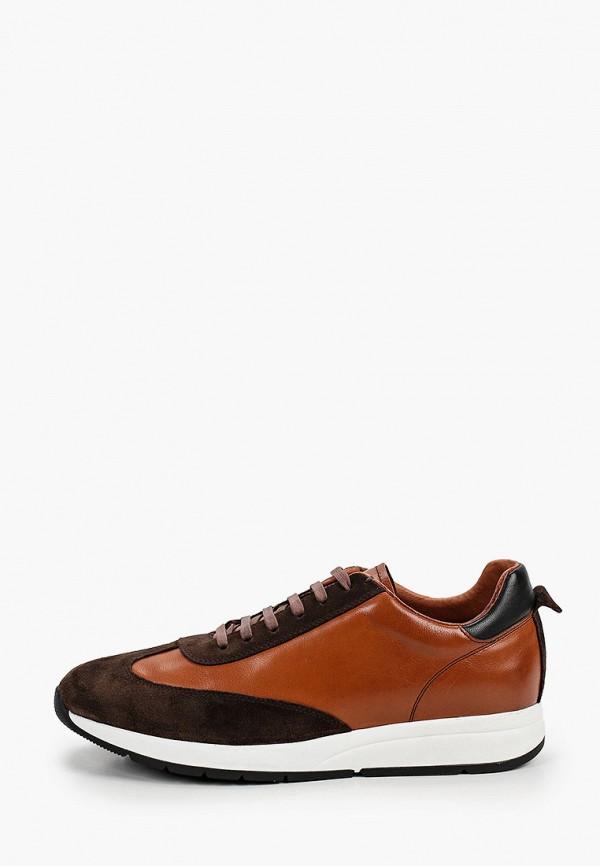 мужские низкие кроссовки valor wolf, коричневые