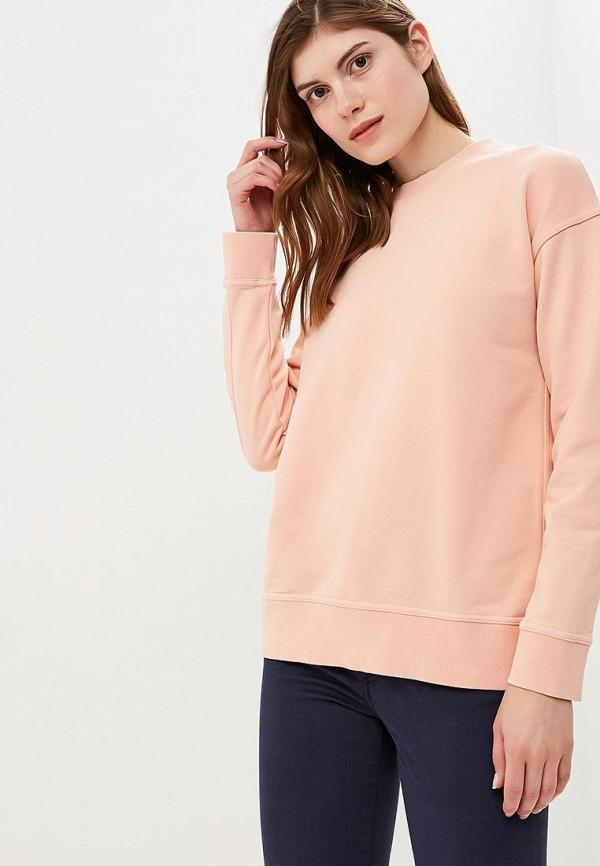 Купить Свитшот Vans, VA984EWCAKV9, розовый, Осень-зима 2018/2019