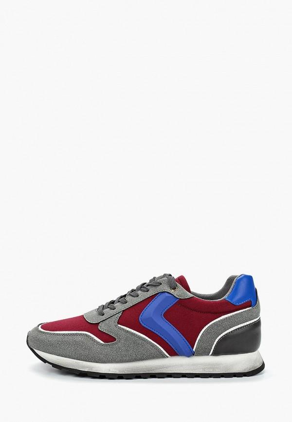 мужские кроссовки vitacci, разноцветные