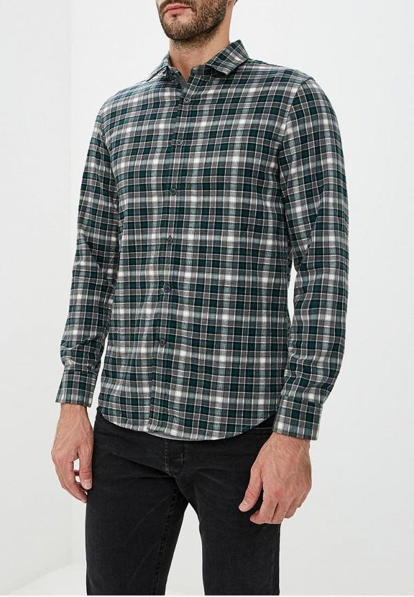 Рубашка Warren Webber