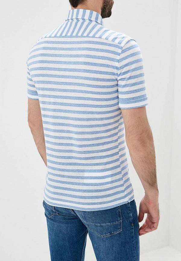 Фото 3 - мужское поло Windsor голубого цвета