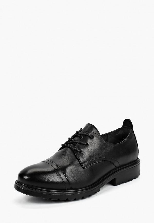 Ботинки Zenden Collection Zenden Collection 203-82WN-033KK