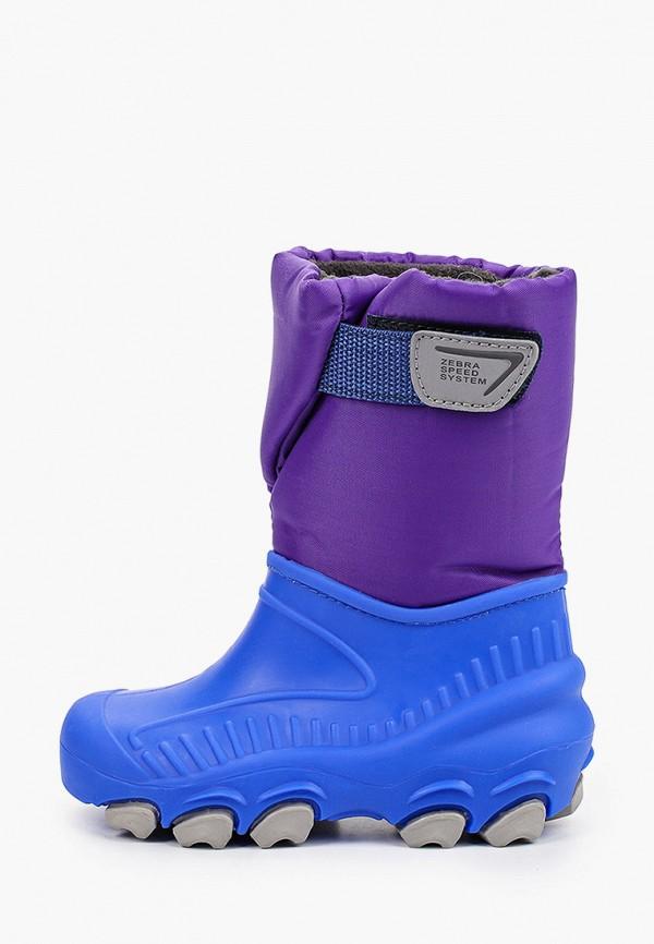 резиновые сапоги зебра для девочки, фиолетовые
