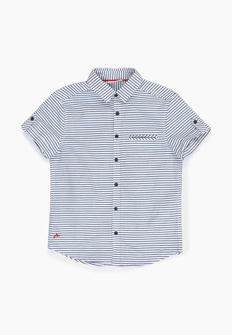 Рубашка Acoola (Акула) 20110290043