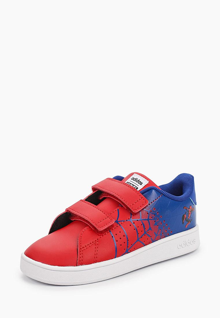 Кеды для мальчиков Adidas (Адидас) EG7903: изображение 2