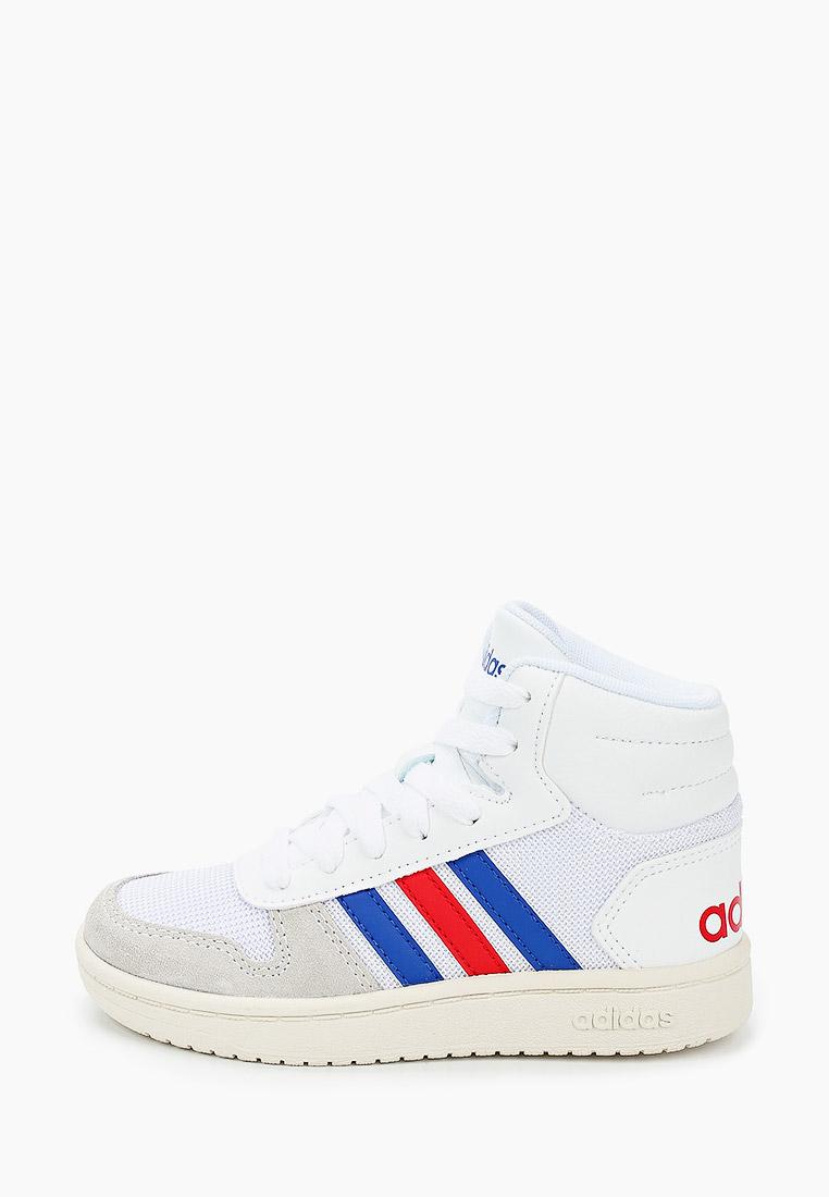Кеды для мальчиков Adidas (Адидас) FW9121: изображение 1