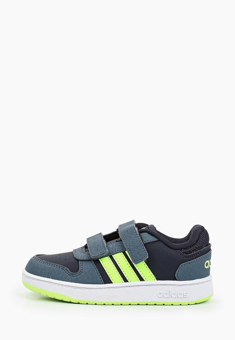 Кеды для мальчиков Adidas (Адидас) FW5241