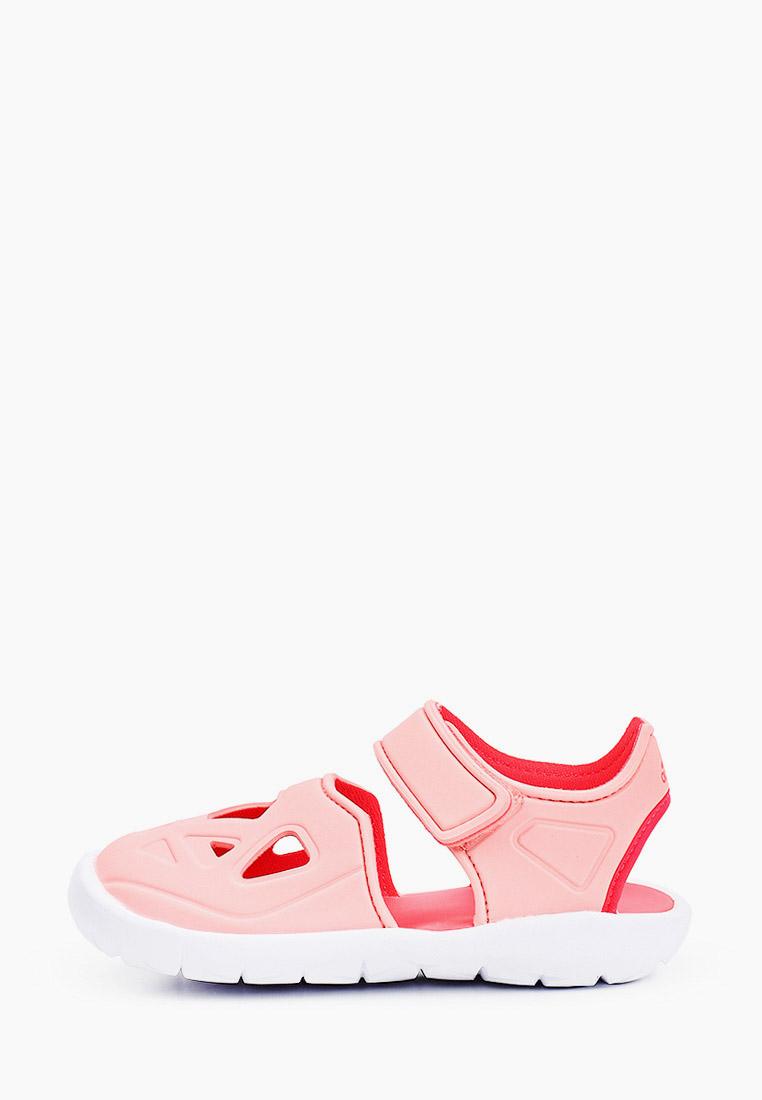 Сланцы Adidas (Адидас) EG6717