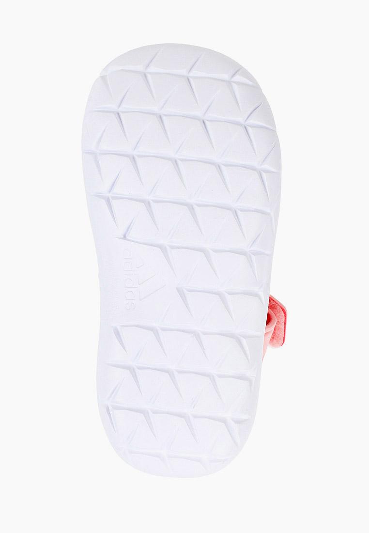 Adidas (Адидас) EG6717: изображение 5