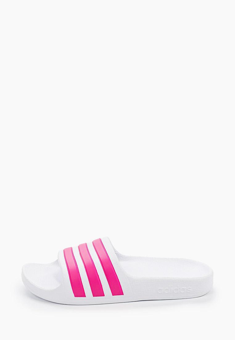 Сланцы Adidas (Адидас) EF1748