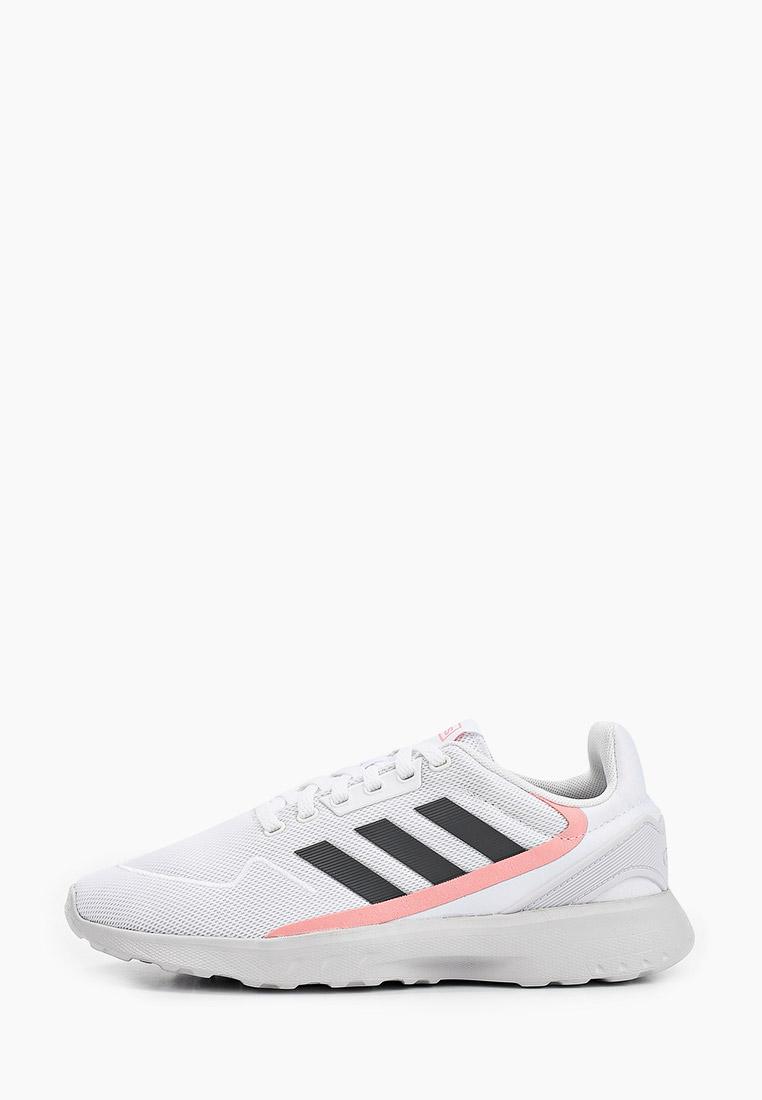 Adidas (Адидас) EG3929: изображение 1