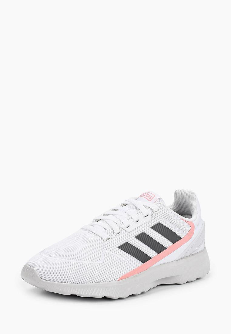 Adidas (Адидас) EG3929: изображение 2