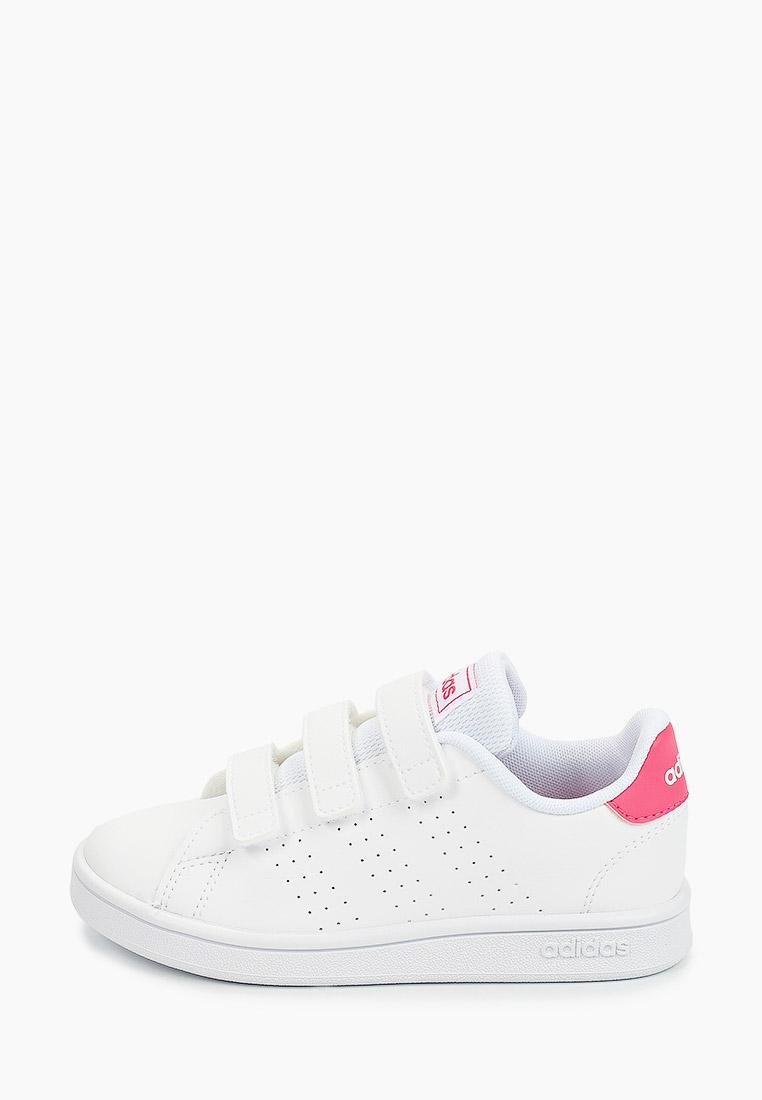 Adidas (Адидас) EF0221: изображение 1