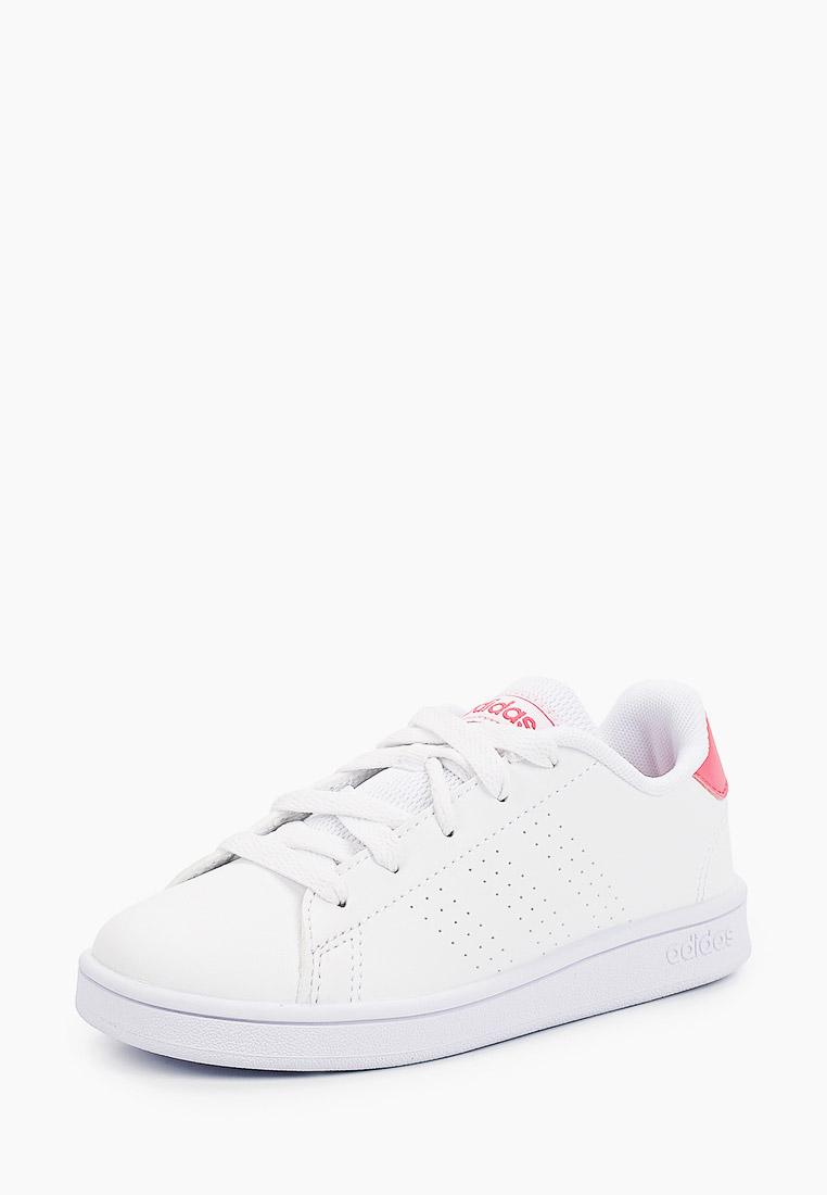 Кеды Adidas (Адидас) EF0211: изображение 2