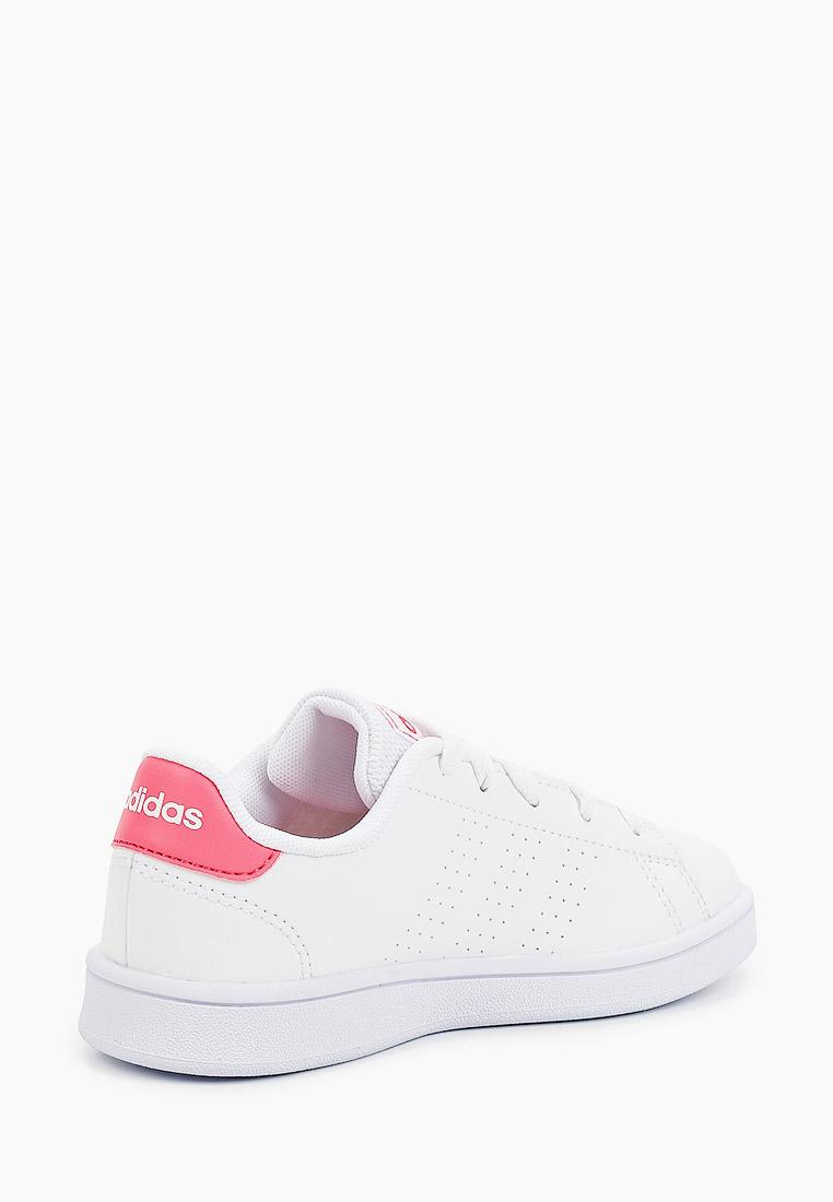 Кеды Adidas (Адидас) EF0211: изображение 3