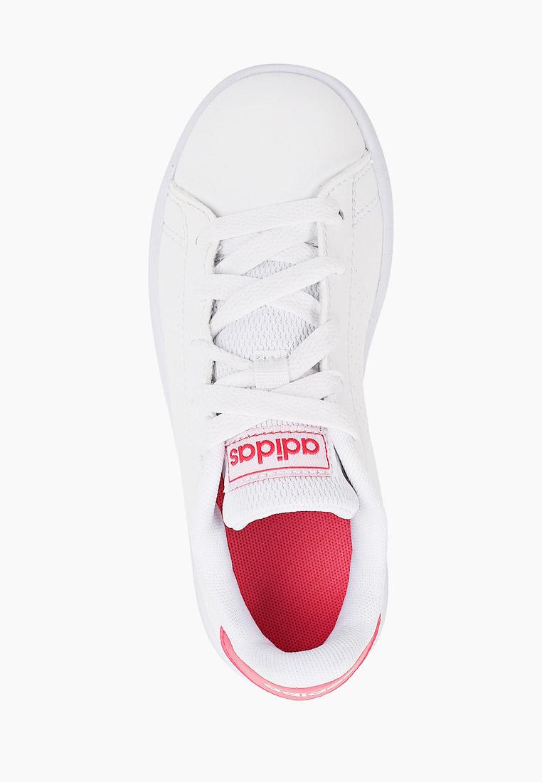 Кеды Adidas (Адидас) EF0211: изображение 4