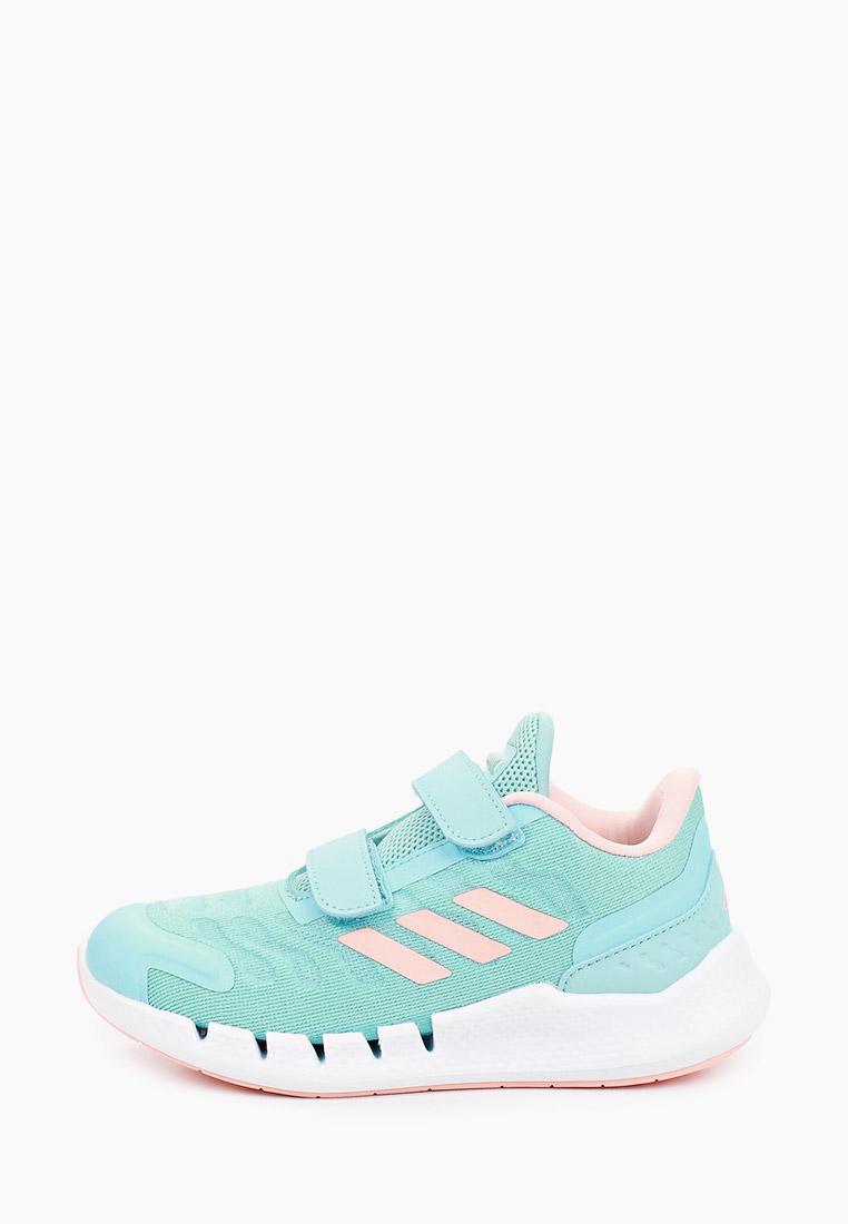 Кроссовки Adidas (Адидас) FZ3022