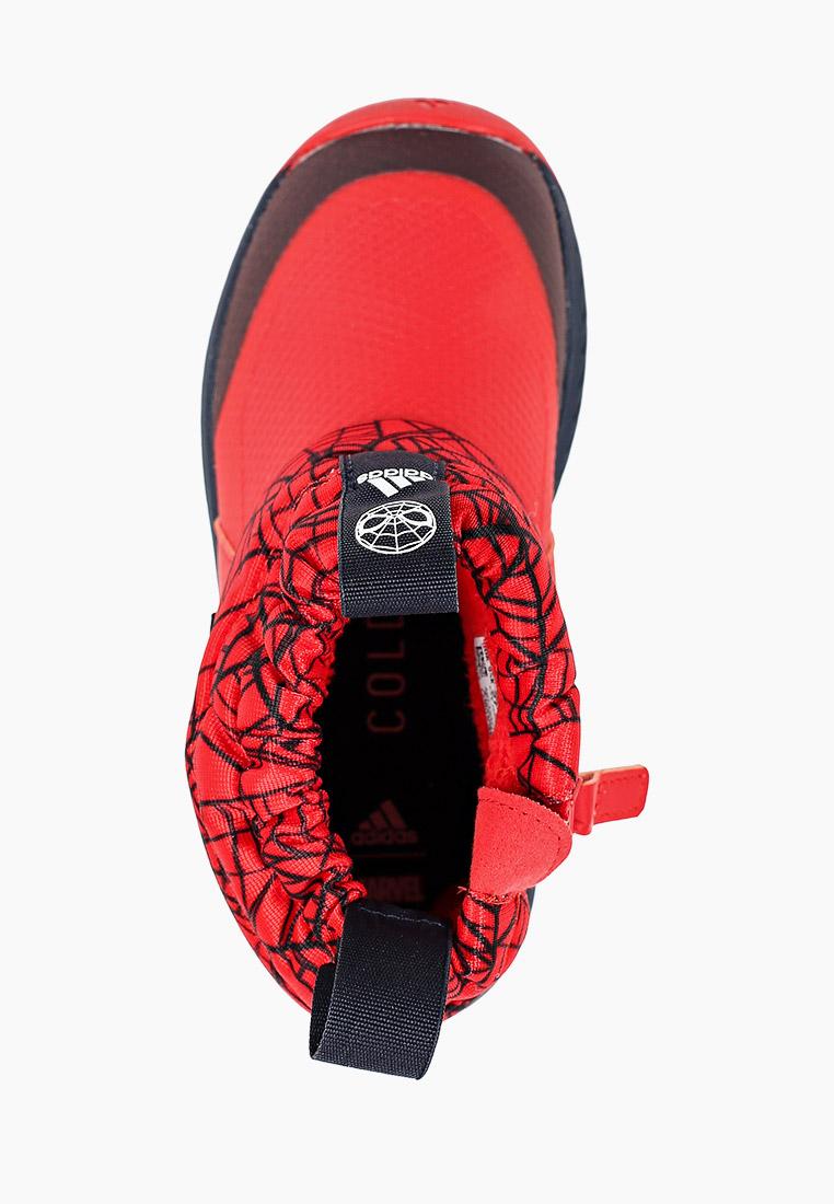 Adidas (Адидас) FV4271: изображение 4