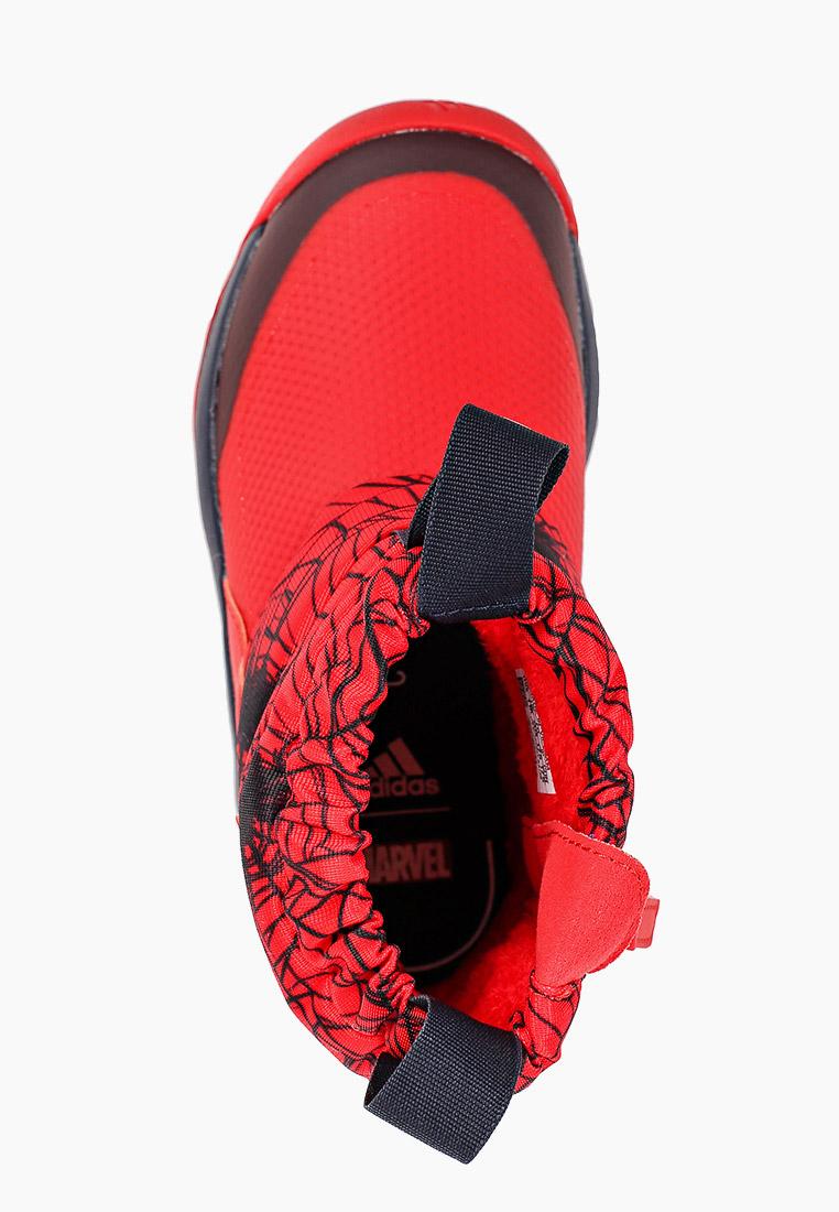 Adidas (Адидас) FV4269: изображение 4