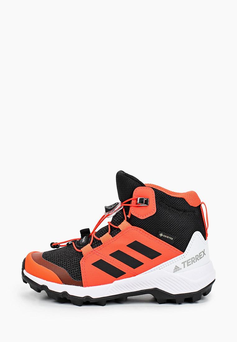 Adidas (Адидас) FW9757: изображение 1